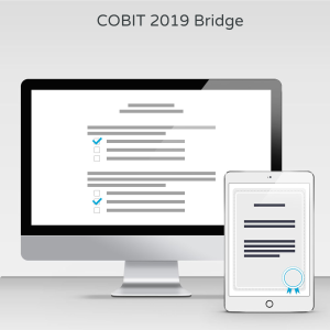 COBIT 2019 Bridge - Exam product photo