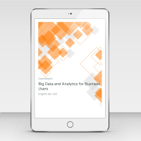 Big Data and Analytics for Business Users WA2186 - Course Book product photo
